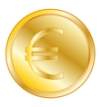 Coin with sign euro vector image