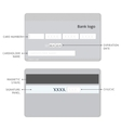 credit card infographic vector image vector image
