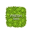 Eco Friendly Label Made in Green Leaves vector image vector image