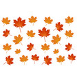 maple autumn leaf background logo vector image