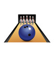realistic bowling icon set isolated on white vector image