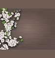 spring blooming branch on old wooden background vector image vector image