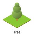 tree icon isometric style vector image