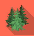 canadian spruce canada single icon in flat style vector image
