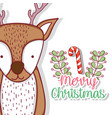 deer with branches leaves and candy cane vector image
