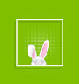 easter bunny in white frame vector image vector image
