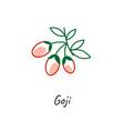 goji berry icon outline vector image vector image