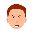 irritated facial expression of little caddy icon vector image