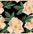 peony pattern seamless floral backdrop vector image vector image