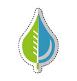 pure water drop with leaf emblem vector image