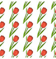 seamless pattern with red tulip vector image