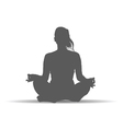 woman in yoga poses silhouette art vector image