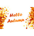 hello autumn background with orange leaves vector image vector image