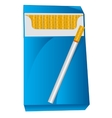 Pack with cigarette vector image