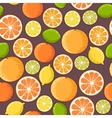 seamless citrus vector image