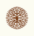 tree root concept nature symbol vector image vector image