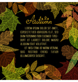 Bright autumn leaves on black background vector image