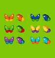 colorful butterflies icons vector image