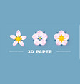 paper flowercollection cute and soft blossom vector image