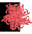 red and black flower vector image vector image