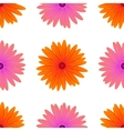 Spring Pink Orange Flowers Isolated vector image vector image