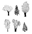 tree sketch set vector image
