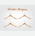 wooden hanger collection different hooks vector image vector image