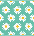 cute camomile plant collection seamless pattern vector image vector image