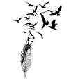 hand drawn seagull feather with flying bird vector image