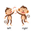 opposite words left and right vector image vector image