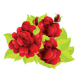 Red roses with leaves vector image vector image