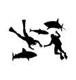 Scuba Divers and Sharks Silhouette vector image vector image