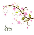 spring background flowering branch vector image