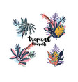 tropical palm leaves bouquets vector image vector image