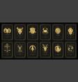 zodiac astrology horoscope cards linocut vector image