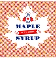 Maple Leaf syrup poster Canadian food American vector image
