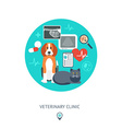 Banner background poster concept with veterinary vector image vector image