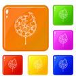 black dandelion icons set color vector image vector image