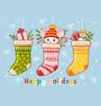 christmas set with socks vector image