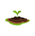 small green sprout in the ground plant in soil vector image
