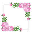 tender pink peonies on corners of square shape vector image vector image