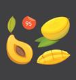 mango yellow fruit isolated vector image
