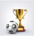 ball and trophy vector image vector image