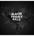 Black friday sale Abstract black explosion vector image vector image