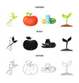 design of and icon collection of vector image vector image