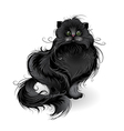 fluffy black cat vector image