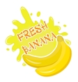 Fresh banana splash icon logo sticker Fruit vector image vector image
