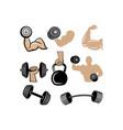 gym workout icon design set bundle template vector image