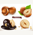 hazelnut 3d realistic icon set vector image