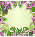 seamless border tropical flowers orchid vector image vector image